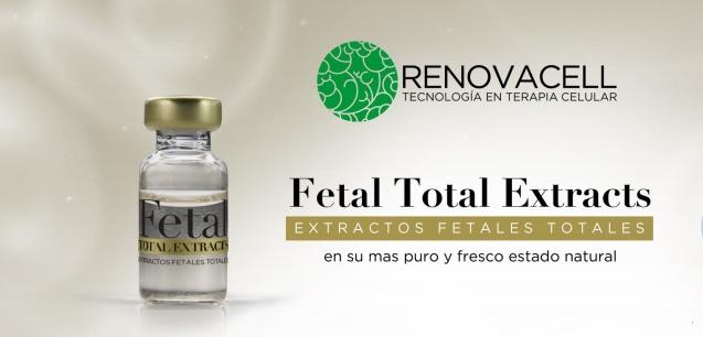 fetal total2