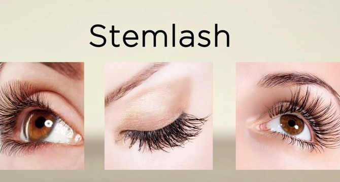 stemlash